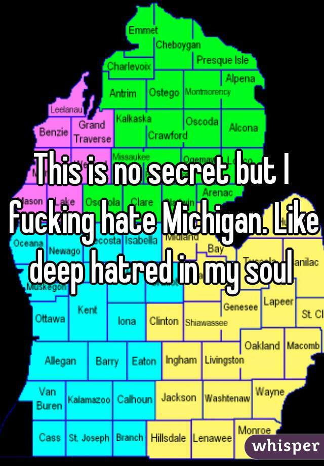 This is no secret but I fucking hate Michigan. Like deep hatred in my soul