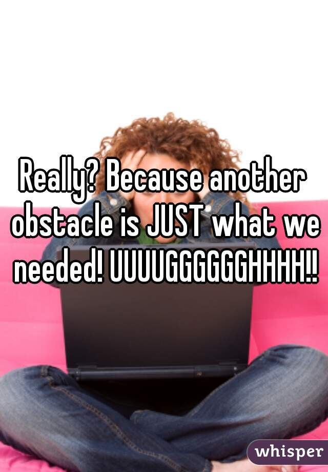 Really? Because another obstacle is JUST what we needed! UUUUGGGGGGHHHH!!