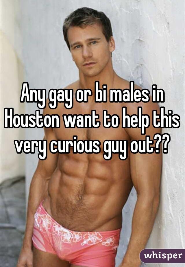 Houston gay guys