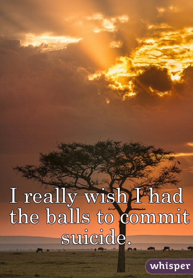 I really wish I had the balls to commit suicide.