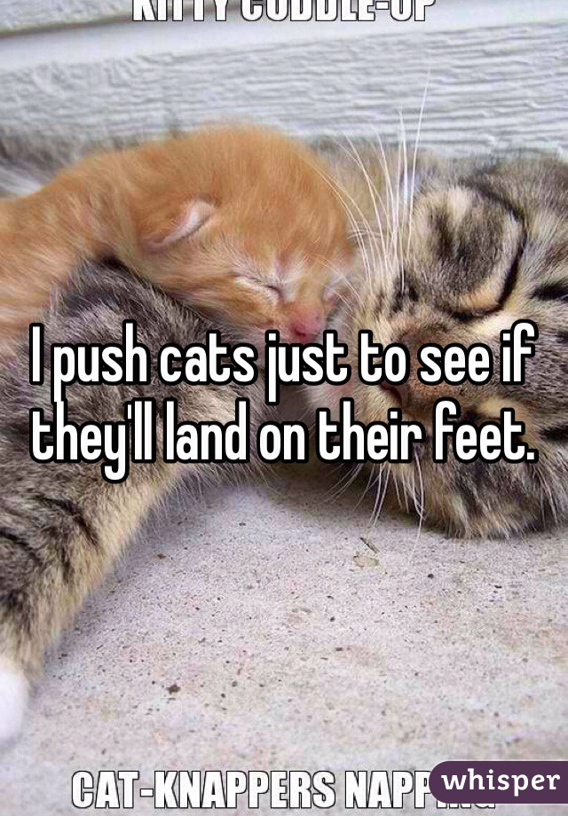 I push cats just to see if they'll land on their feet.