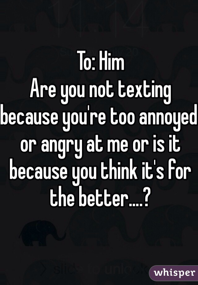 To: Him Are you not texting because you're too annoyed or angry at me or is it because you think it's for the better....?