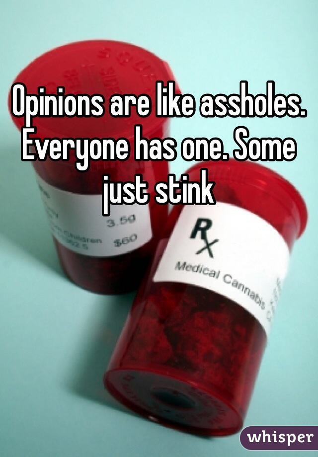 Opinions are like assholes. Everyone has one. Some just stink