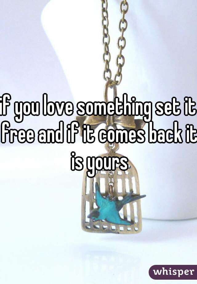 if you love something set it free and if it comes back it is yours