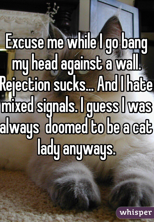 Excuse me while I go bang my head against a wall. Rejection sucks... And I hate mixed signals. I guess I was always  doomed to be a cat lady anyways.