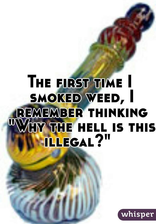 """The first time I smoked weed, I remember thinking """"Why the hell is this illegal?"""""""