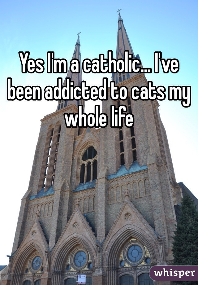 Yes I'm a catholic... I've been addicted to cats my whole life
