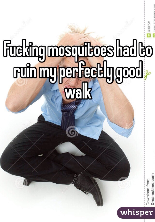 Fucking mosquitoes had to ruin my perfectly good walk