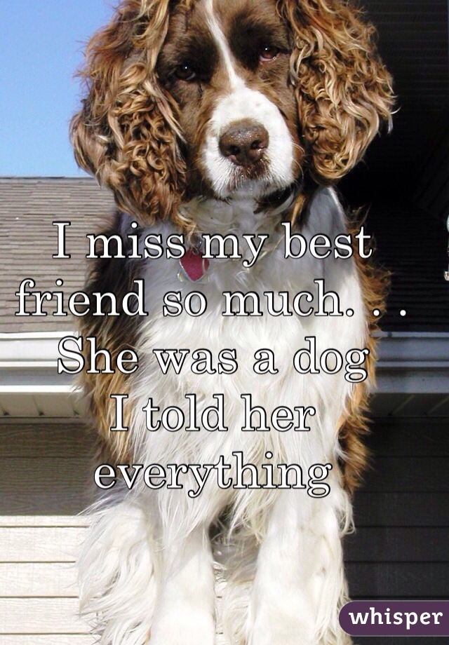 I miss my best friend so much. . .  She was a dog I told her everything