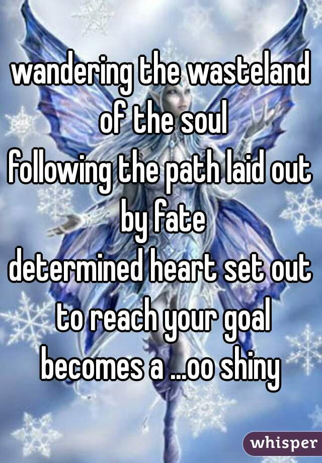 wandering the wasteland of the soul following the path laid out by fate determined heart set out to reach your goal becomes a ...oo shiny