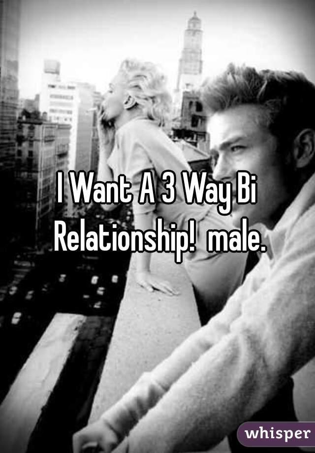 I Want A 3 Way Bi Relationship!  male.