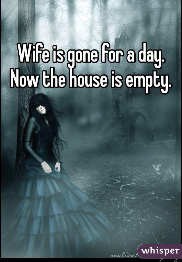 Wife is gone for a day. Now the house is empty.