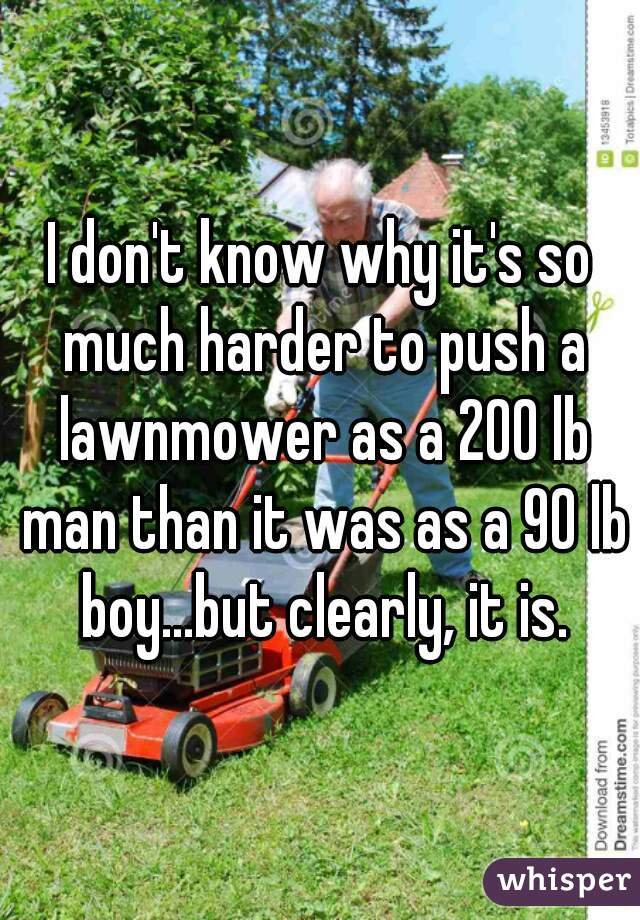 I don't know why it's so much harder to push a lawnmower as a 200 lb man than it was as a 90 lb boy...but clearly, it is.