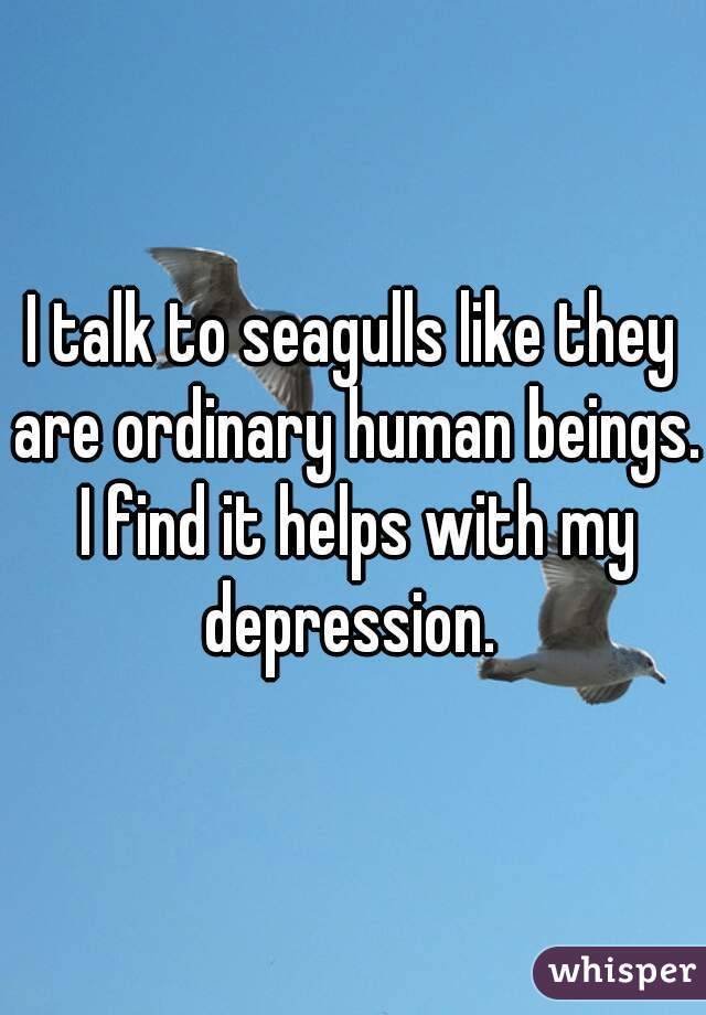 I talk to seagulls like they are ordinary human beings. I find it helps with my depression.