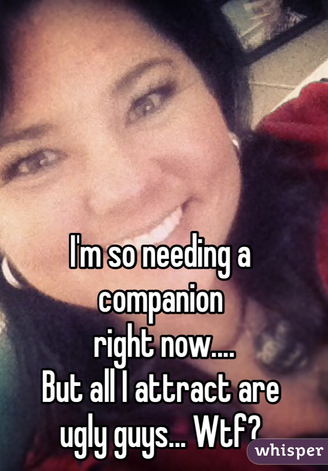 I'm so needing a  companion  right now....  But all I attract are  ugly guys... Wtf?