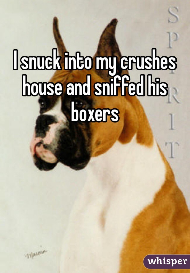 I snuck into my crushes house and sniffed his boxers