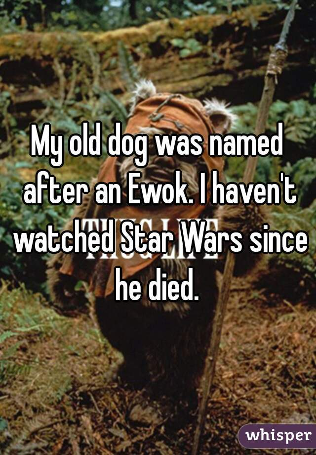 My old dog was named after an Ewok. I haven't watched Star Wars since he died.