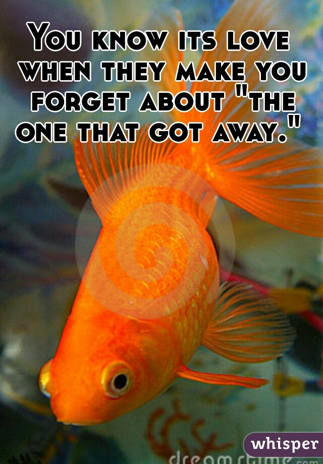 """You know its love when they make you forget about """"the one that got away."""""""