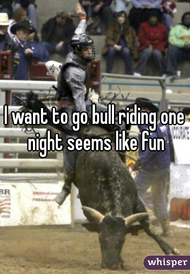 I want to go bull riding one night seems like fun