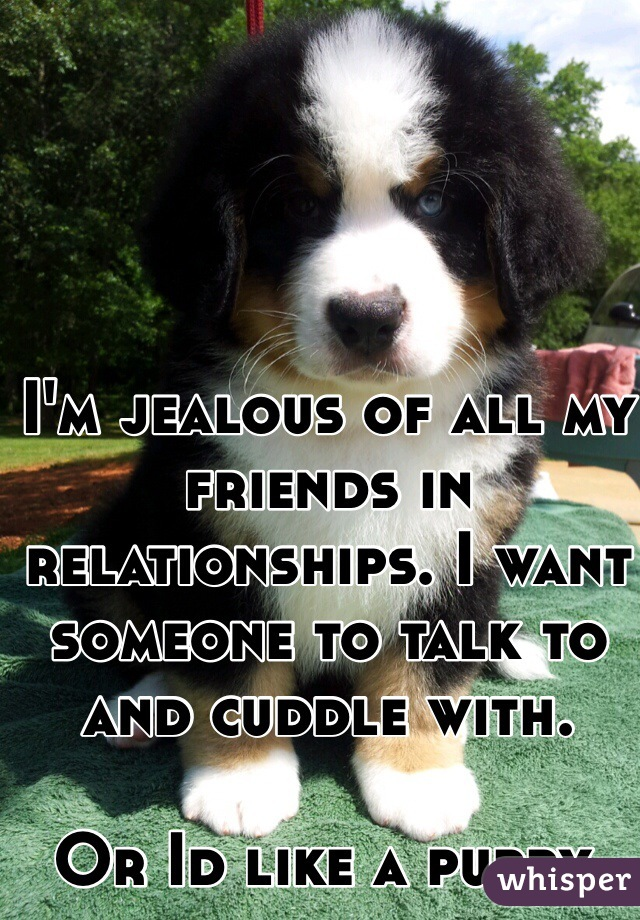 I'm jealous of all my friends in relationships. I want someone to talk to and cuddle with.   Or Id like a puppy.