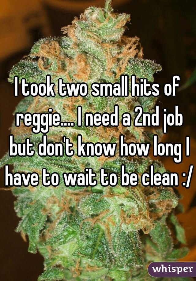 I took two small hits of reggie.... I need a 2nd job but don't know how long I have to wait to be clean :/