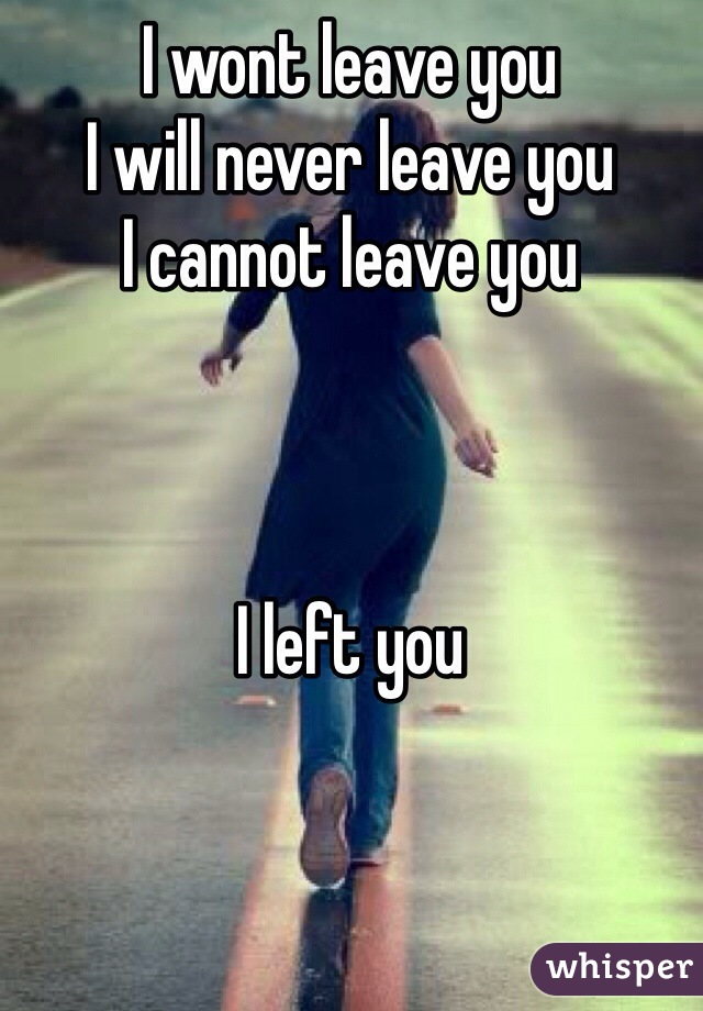 I wont leave you I will never leave you I cannot leave you    I left you