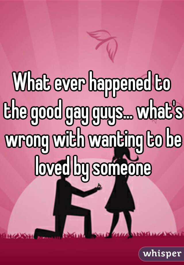 What ever happened to the good gay guys... what's wrong with wanting to be loved by someone