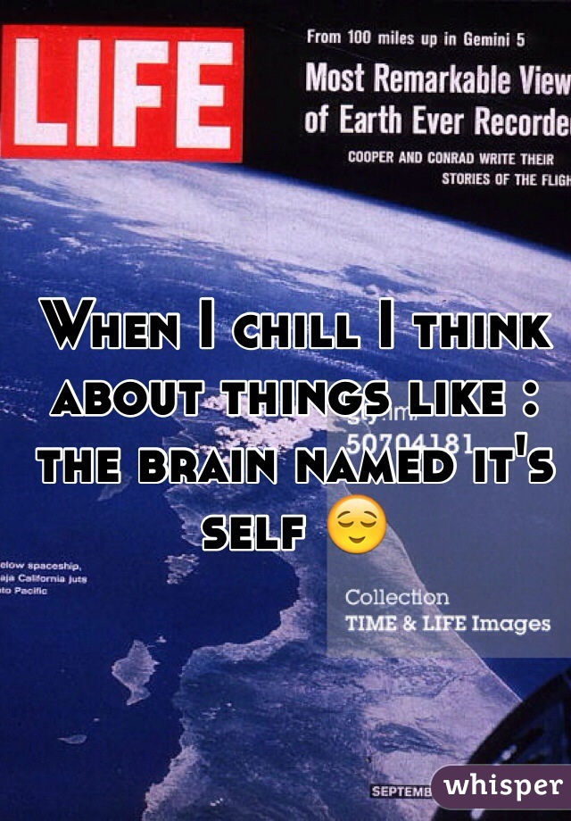 When I chill I think about things like : the brain named it's self 😌