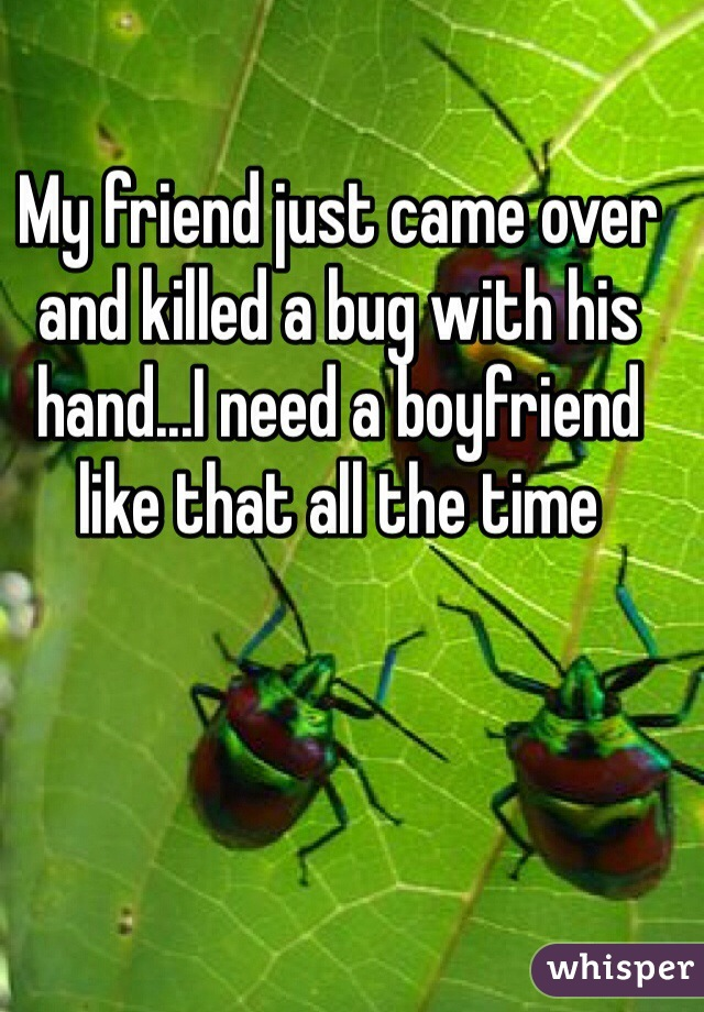 My friend just came over and killed a bug with his hand...I need a boyfriend like that all the time