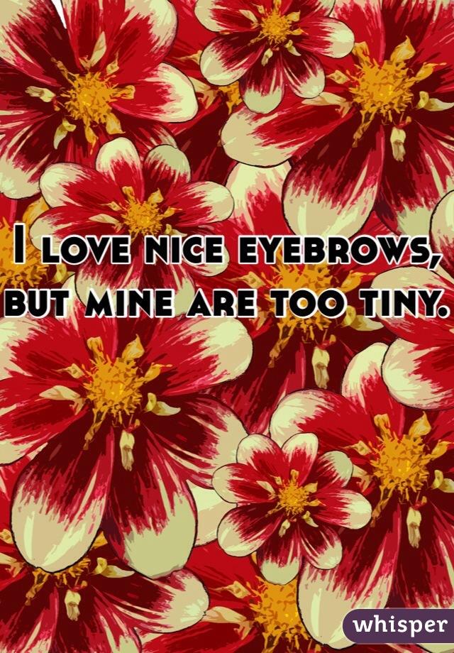 I love nice eyebrows, but mine are too tiny.