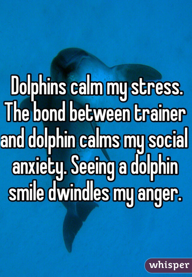 Dolphins calm my stress. The bond between trainer and dolphin calms my social anxiety. Seeing a dolphin smile dwindles my anger.