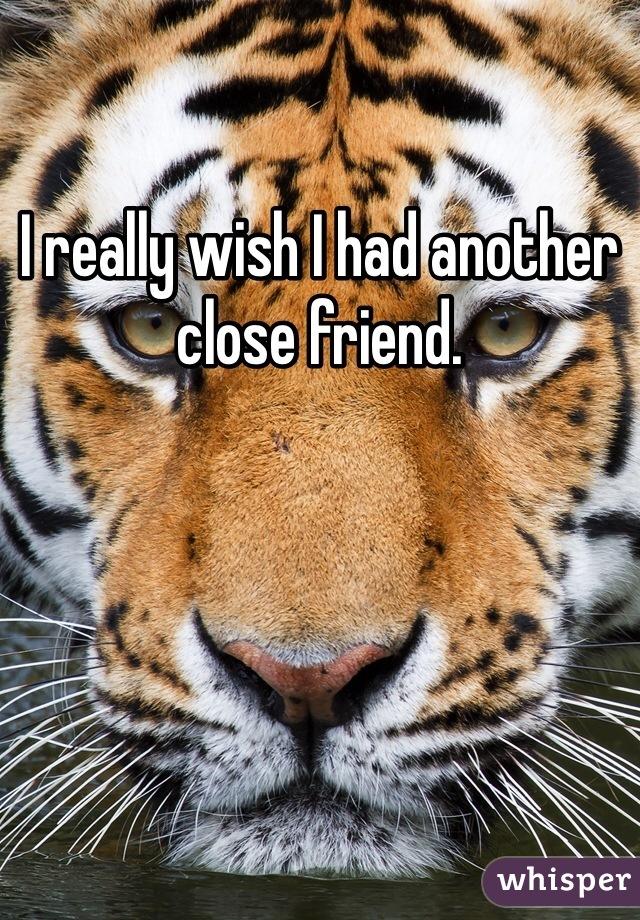 I really wish I had another close friend.