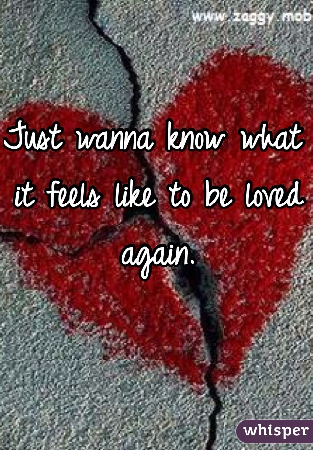 Just wanna know what it feels like to be loved again.