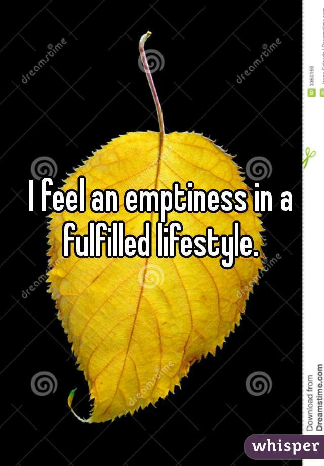 I feel an emptiness in a fulfilled lifestyle.