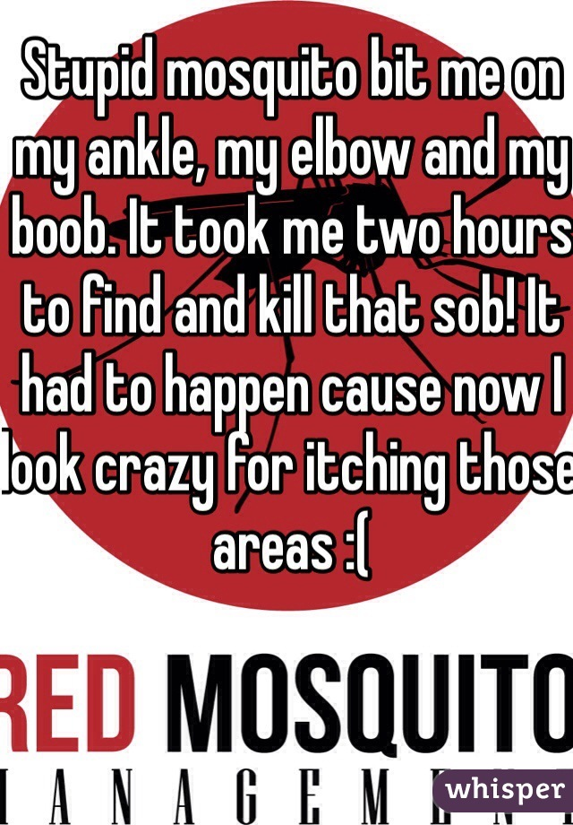 Stupid mosquito bit me on my ankle, my elbow and my boob. It took me two hours to find and kill that sob! It had to happen cause now I look crazy for itching those areas :(