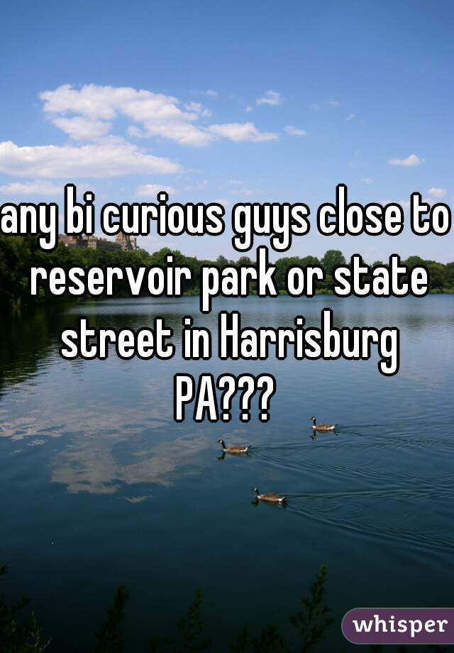 any bi curious guys close to reservoir park or state street in Harrisburg PA???