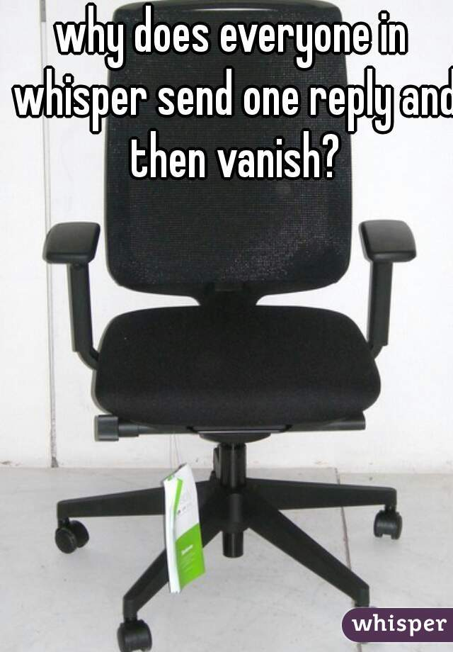 why does everyone in whisper send one reply and then vanish?