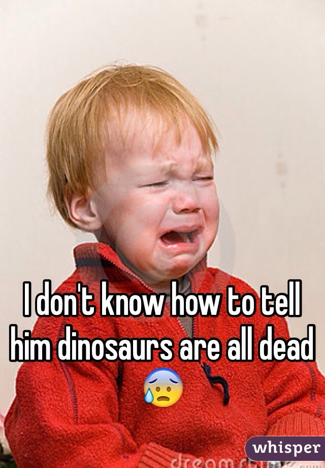 I don't know how to tell him dinosaurs are all dead 😰