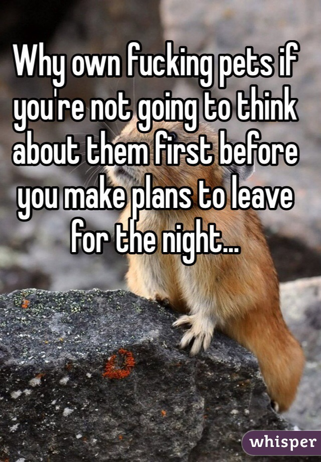 Why own fucking pets if you're not going to think about them first before you make plans to leave for the night...