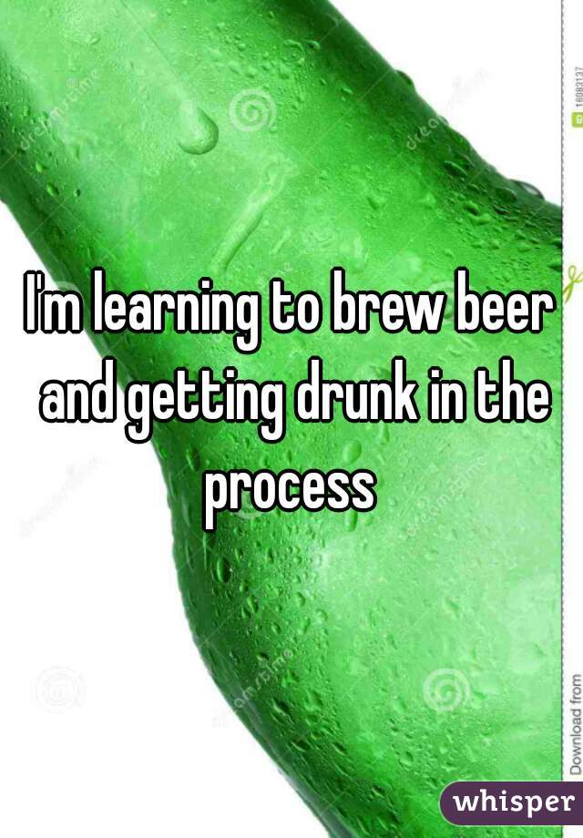 I'm learning to brew beer and getting drunk in the process