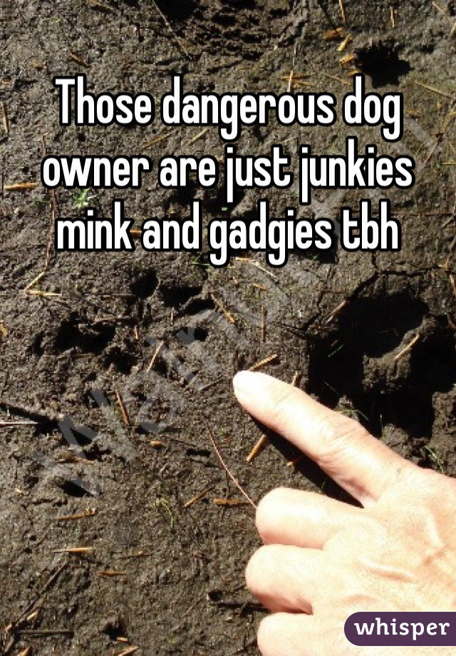 Those dangerous dog owner are just junkies mink and gadgies tbh