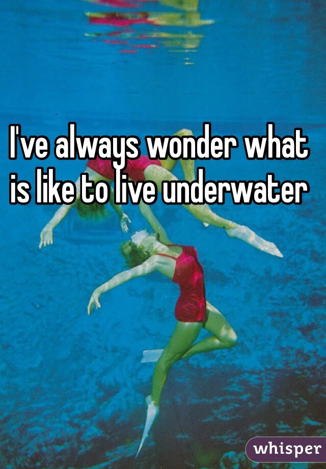 I've always wonder what is like to live underwater