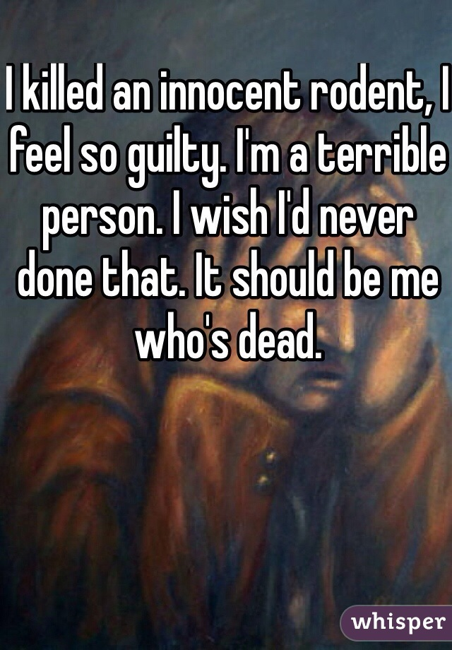 I killed an innocent rodent, I feel so guilty. I'm a terrible person. I wish I'd never done that. It should be me who's dead.