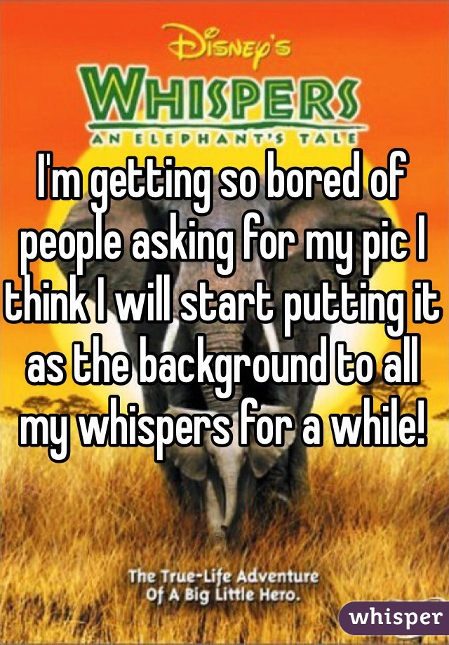 I'm getting so bored of people asking for my pic I think I will start putting it as the background to all my whispers for a while!