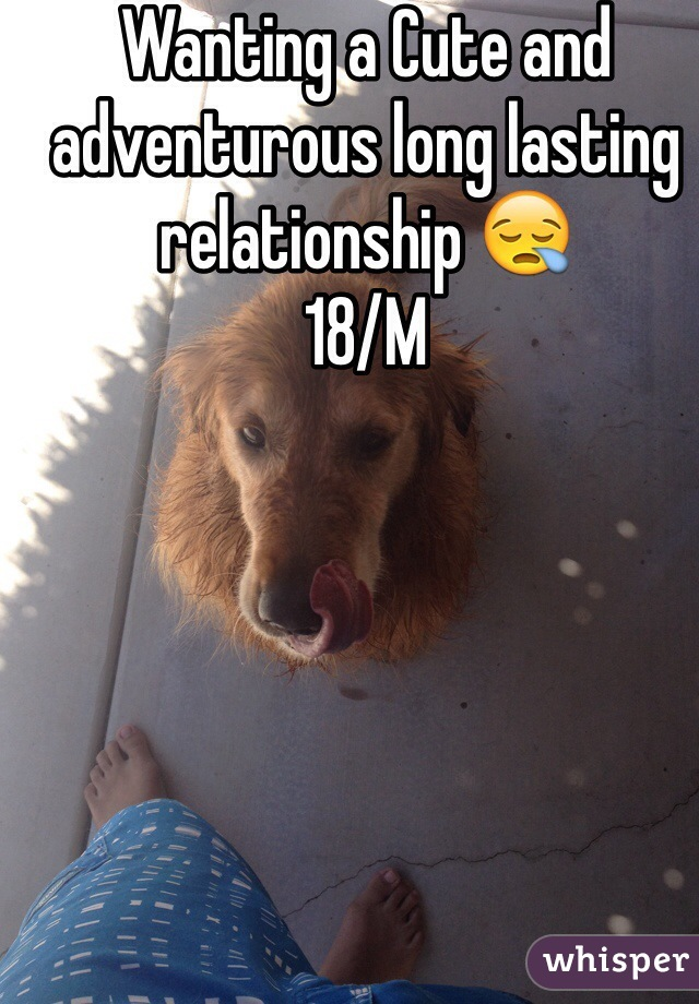 Wanting a Cute and adventurous long lasting relationship 😪 18/M