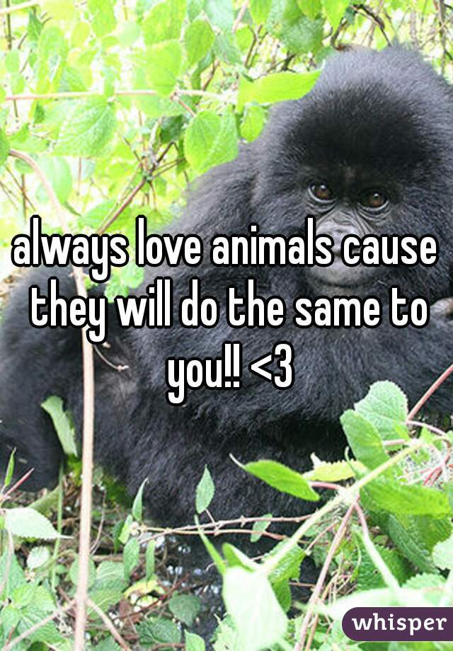 always love animals cause they will do the same to you!! <3