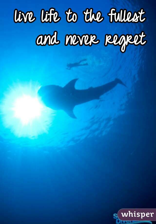live life to the fullest    and never regret