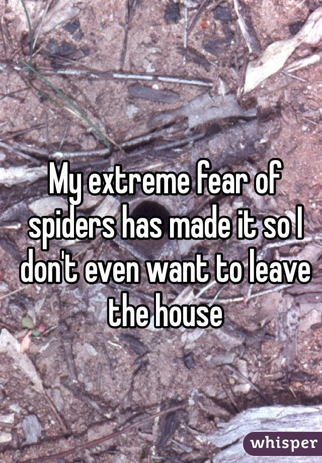 My extreme fear of spiders has made it so I don't even want to leave the house