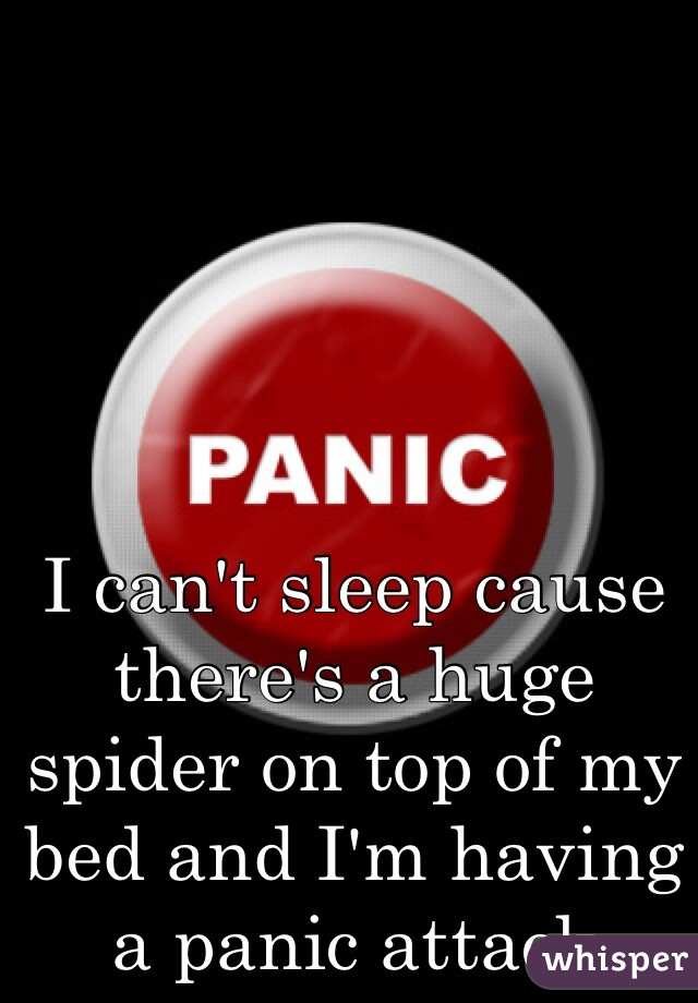 I can't sleep cause there's a huge spider on top of my bed and I'm having a panic attack