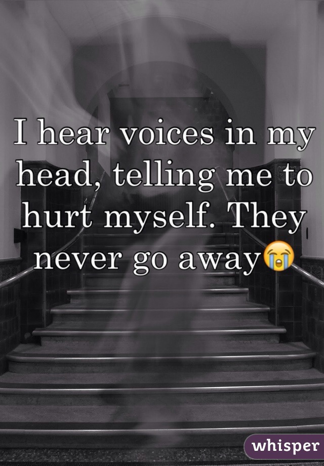 I hear voices in my head, telling me to hurt myself. They never go away😭